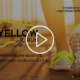 teaser-video-yellow-run-amfe-chaine-tv-c8
